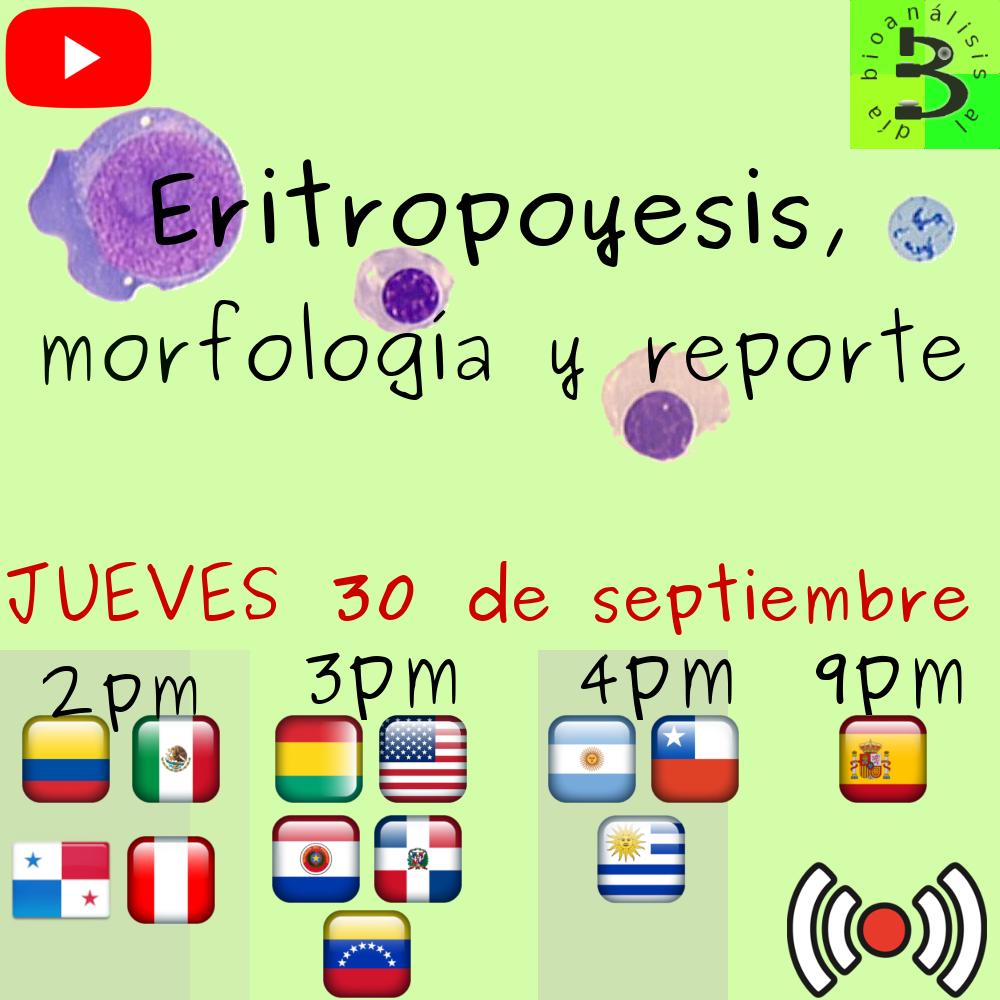 Eritropoyésis, morfología y reporte